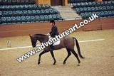 20111210-1030-Gleneagles-3623