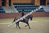 20111210-1132-Gleneagles-3922