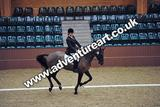 20111210-1135-Gleneagles-3942
