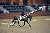 20111210-1136-Gleneagles-3949