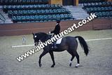 20111210-1357-Gleneagles-4500