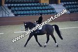 20111210-1357-Gleneagles-4501