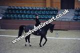 20111210-1400-Gleneagles-4559