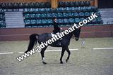 20111210-1401-Gleneagles-4568