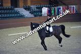 20111210-1401-Gleneagles-4581
