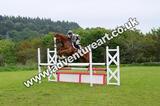 20130609-1002-Auchleshie-0323