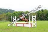 20130609-1517-Auchleshie-1844