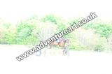 20130609-1703-Auchleshie-2509