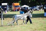 20130727-0904-braco-9889