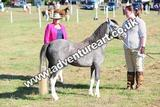 20130727-0907-braco-9899