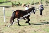 20130727-0913-braco-9952