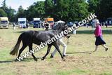 20130727-0925-braco-0008