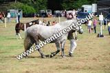 20130727-0953-braco-0300