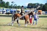 20130727-0858-braco-9779