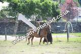 20130727-1129-braco-1000