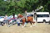 20130727-1431-braco-2435