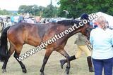20130727-1436-braco-2492