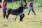 20130727-0859-braco-3630a