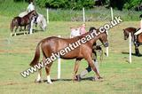 20130727-0859-braco-3631a