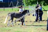 20130727-0907-braco-3681a
