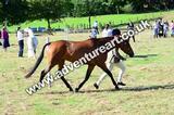20130727-0909-braco-3689a