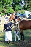 20130727-0913-braco-3722a