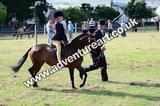 20130727-0939-braco-3957a
