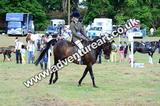 20130727-1005-braco-4153a