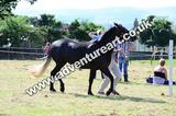 20130727-1032-braco-4433a