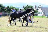 20130727-1032-braco-4435a