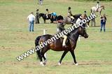 20130727-1052-braco-4623a