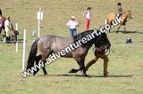 20130727-1055-braco-4689a