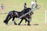 20130727-1055-braco-4697a