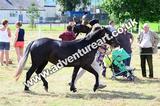 20130727-1055-braco-4699a
