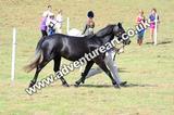 20130727-1056-braco-4701a
