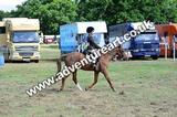 20130727-1131-braco-5182a