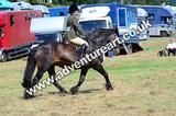20130727-1134-braco-5219a