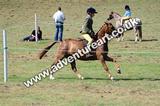 20130727-1135-braco-5239a