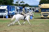 20130727-1136-braco-5256a