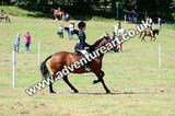 20130727-1200-braco-5523a