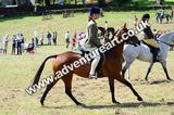 20130727-1200-braco-5537a
