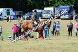 20130727-1300-braco-6091a