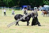 20130727-1406-braco-6815a